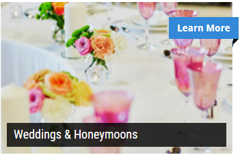 Review Weddings & Honeymoons